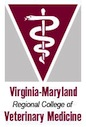 Two Women Named to Veterinary Faculty at Virginia Tech