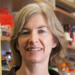Berkeley's Jennifer Doudna Wins a $3 Million Breakthrough Prize