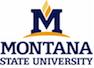 montana-state2