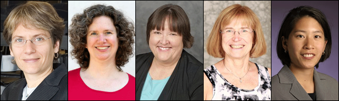Ten Women Academics Named To American Chemical Society
